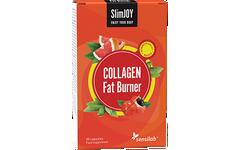 COLLAGEN Fat Burner