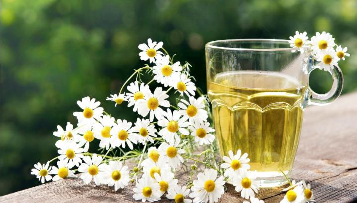Ceaiul de musetel te ajuta sa slabesti – O viață confortabilă